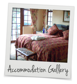 Accommodation Gallery